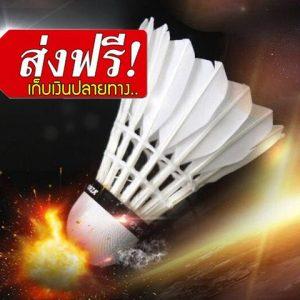 ลูกแบดมินตัน สปีด 75 ลูกแบด ลูกขนไก่ hangyu ฮังหยู อุปกรณ์กีฬา อุปกรณ์กีฬาแบตมินตัน อุปกรณ์ออกกําลังกาย ลูก ขนเป็ด อุปกรณ์แบดมินตัน ร้าน